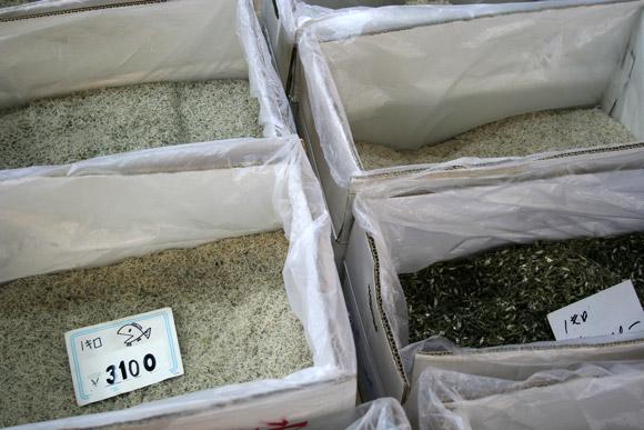 Alternative to Tokyo Tsukiji Market: Kyoto Wholesale Food Market 京都中央卸市場