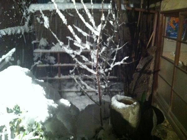 Kyoto Snowfall February 2012