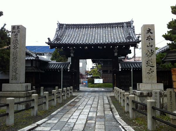Falling Sakura Petals at Myorenji Temple