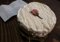Shio-zakura Camembert Cheese from Hokkaido (塩桜カマンベールチーズ)