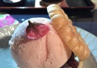 Horrible Experience at Kyoto Kanshundo (甘春堂 七條 本店) -- Sakura Mochi Ice Cream